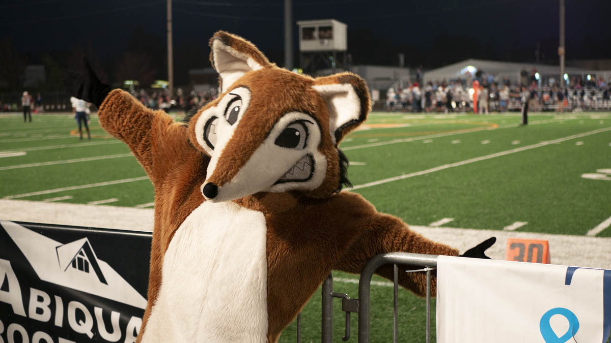 The Fox in Front of the Football Field